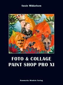 Foto & Collage Paint Shop Pro XI